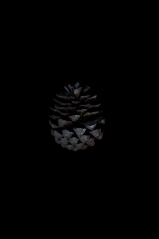 fallendepths-6_ilonanelson
