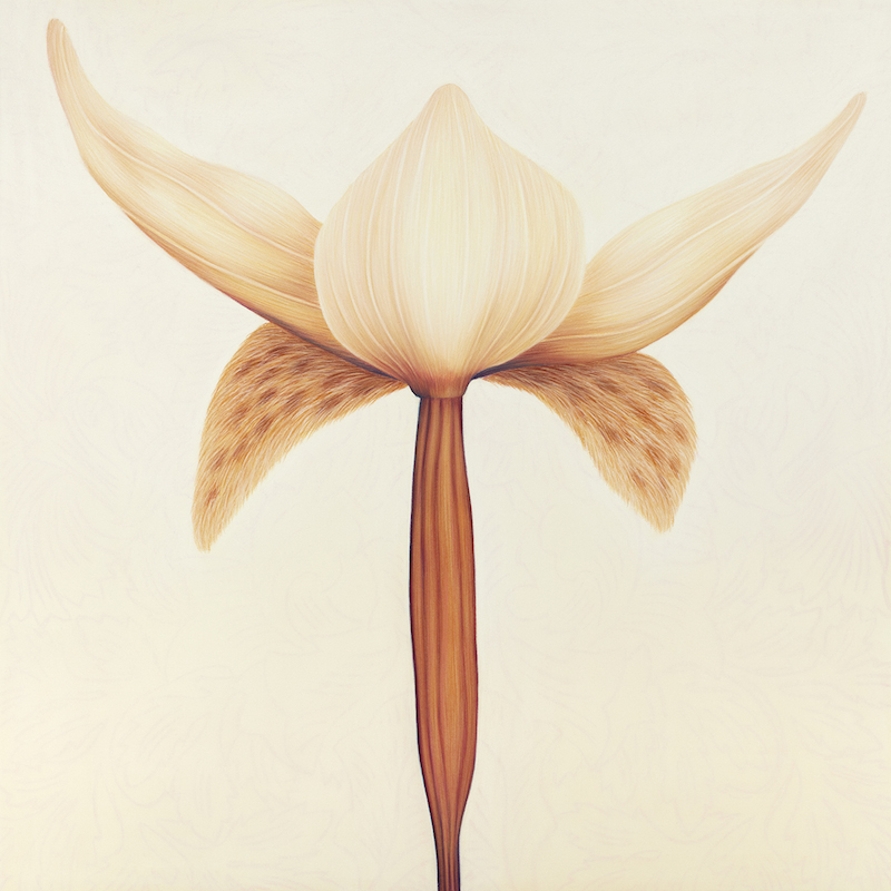 Wallflower - A monumental implication, pastel on paper, 80 x 80cm, 2010
